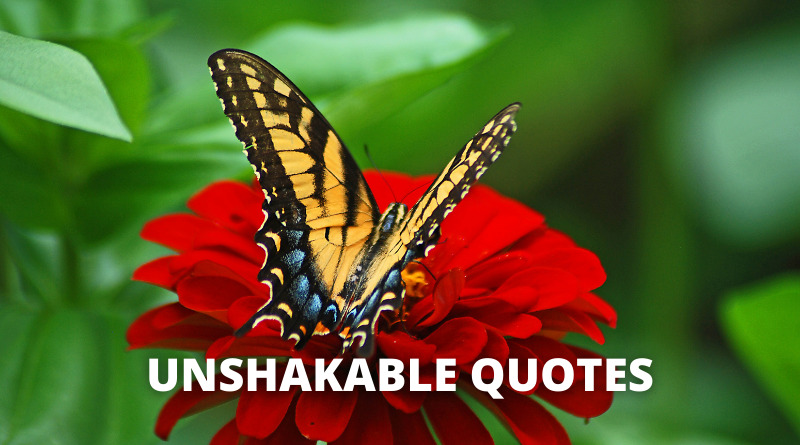 Unshakable Quotes featured