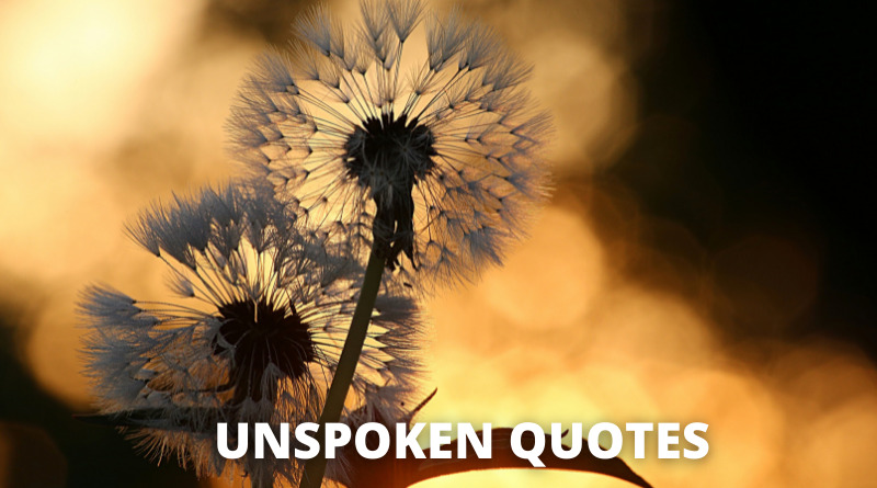 Unspoken quotes featured