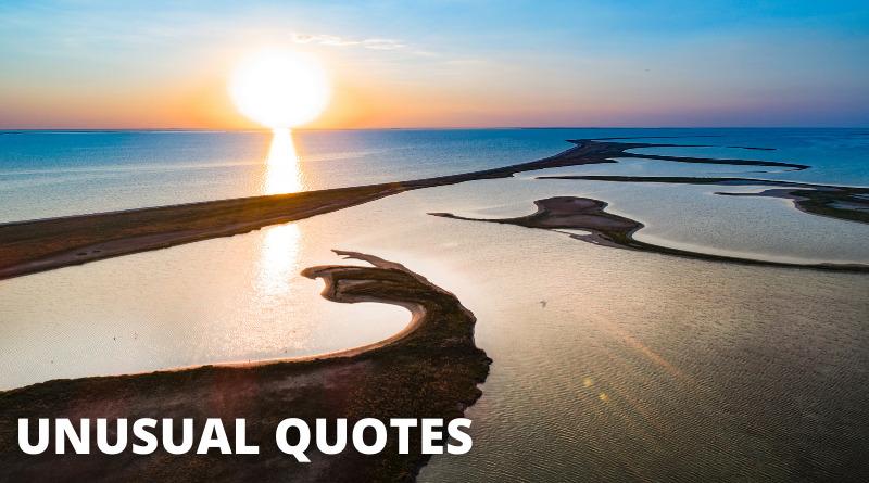 Unusual Quotes featured