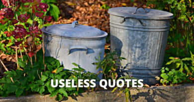 Useless quotes featured