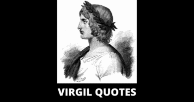 Motivational Virgil Quotes