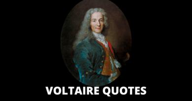 Voltaire Quotes featured