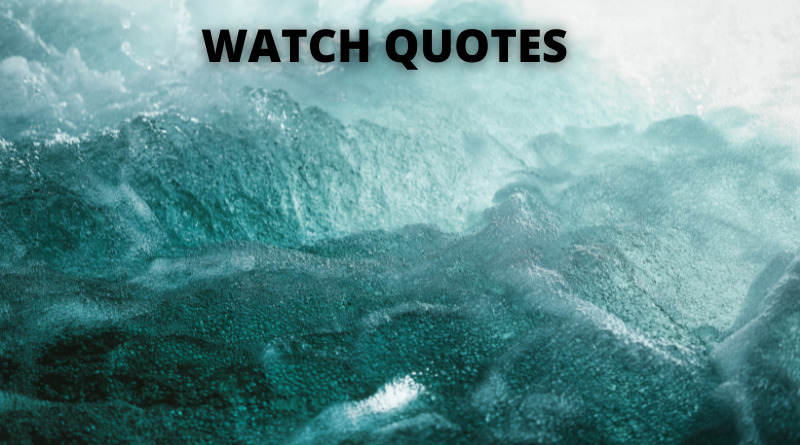 WATCH QUOTES FEATURE