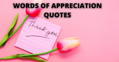 appreciation quotes featured