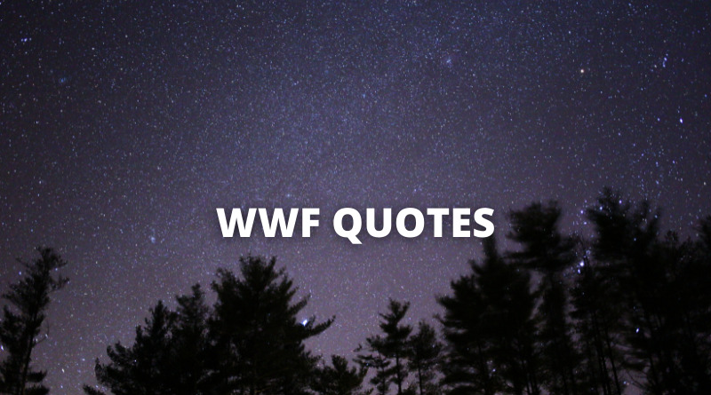WWF Quotes Featured