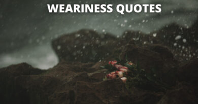 Weariness Quotes featured