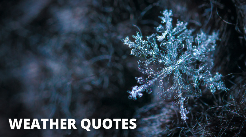 Weather Quotes Featured