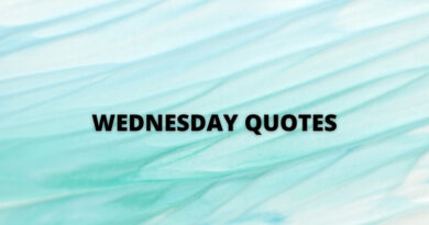 Wednesday quotes featured