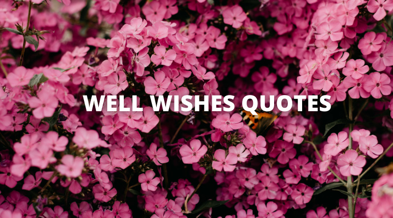 Well Wishes Quotes featured