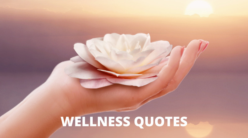 Wellness Quotes Featured