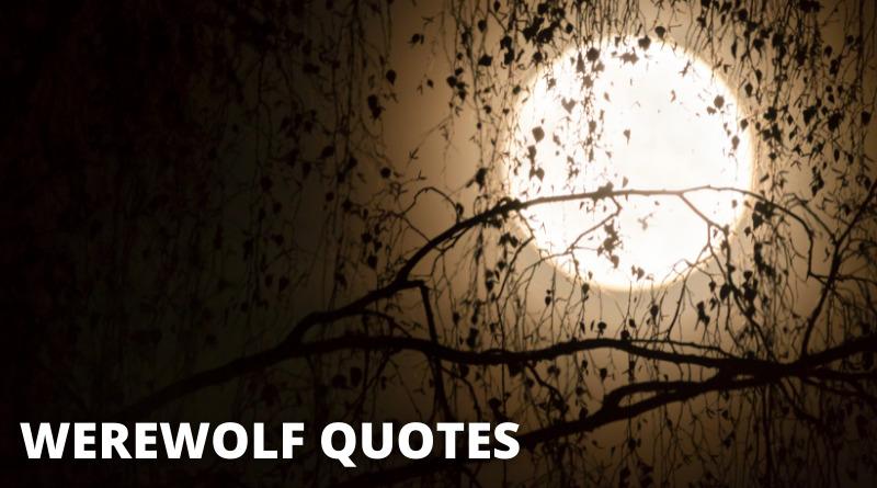 Werewolf Quotes featured
