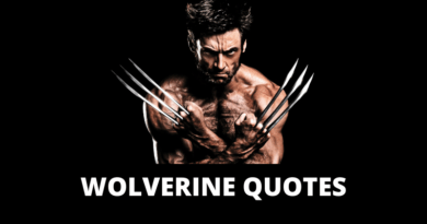 Wolverine Quotes featured