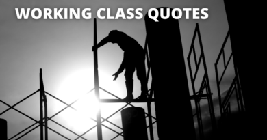 Working Class Quotes Featured