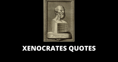 Xenocrates quotes
