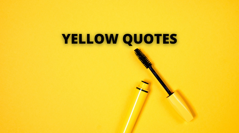 YELLOW QUOTES FEATURE