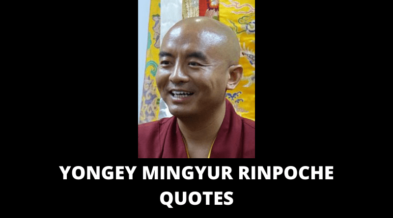 Yongey Mingyur Rinpoche Quotes featured