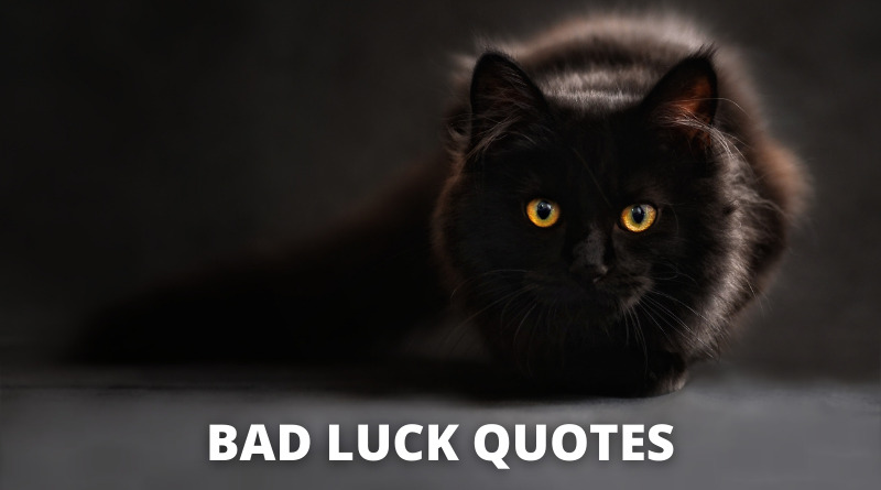 bad luck quotes featured