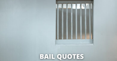 bail quotes featured