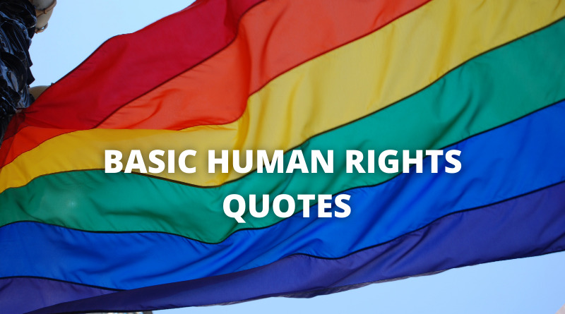 basic human rights quotes featured