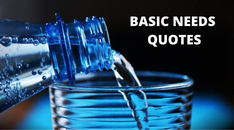 basic needs quotes featured