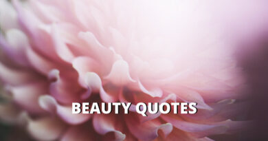 beauty quotes featured