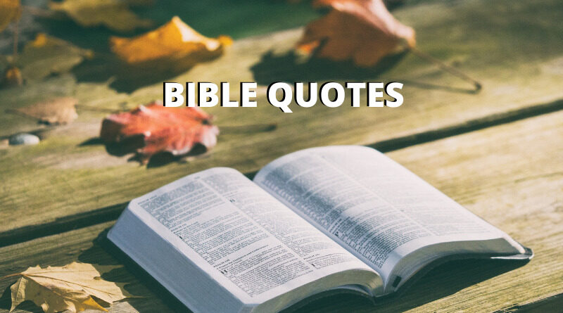 bible quotes featured
