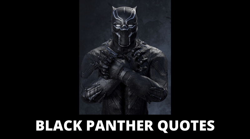 black panther quotes featured