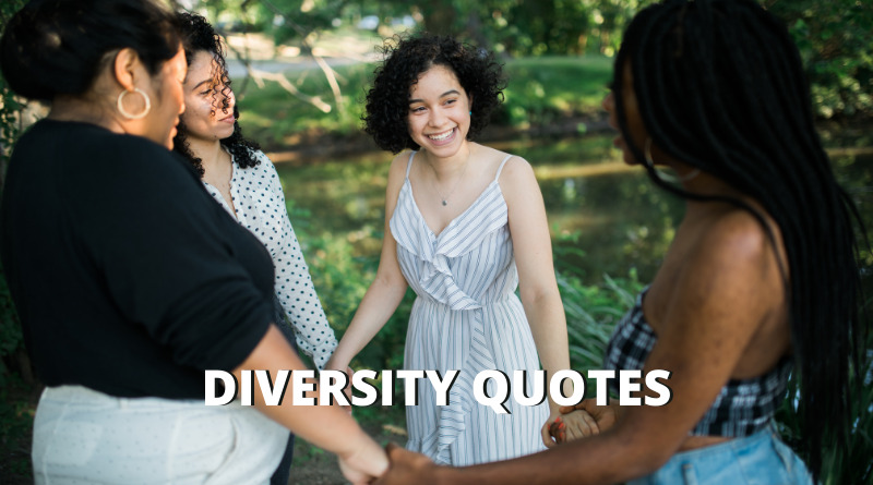 diversity quotes featured