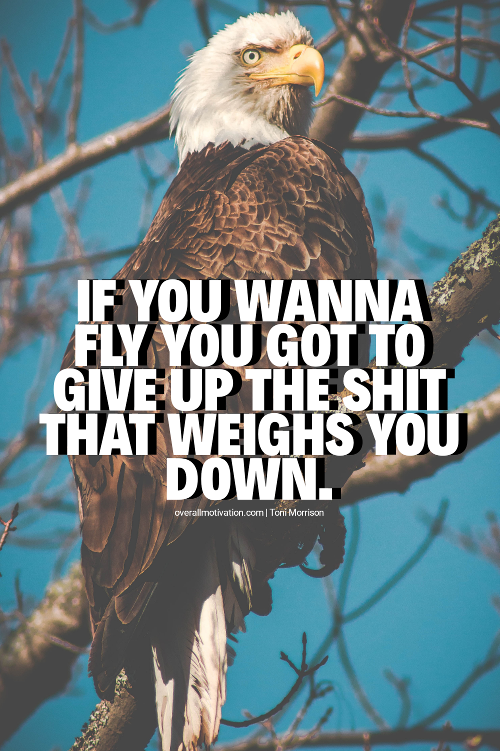 if you wanna fly_badass quotes