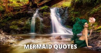 mermaid quotes featured