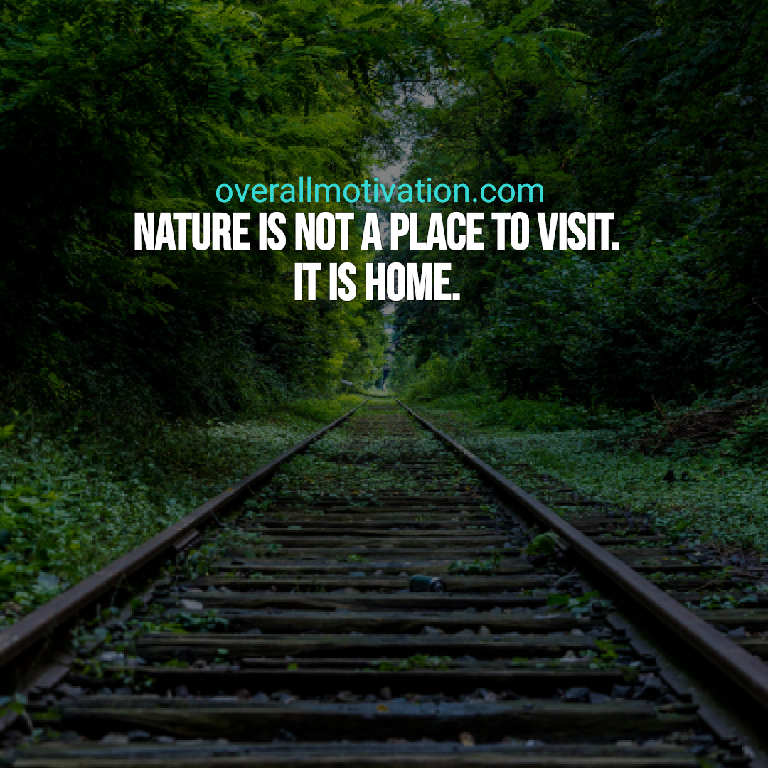 best nature quotes nature is not place to visit