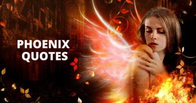 phoenix Quotes Featured