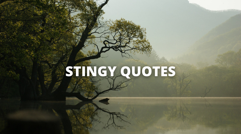 stingy quotes featured