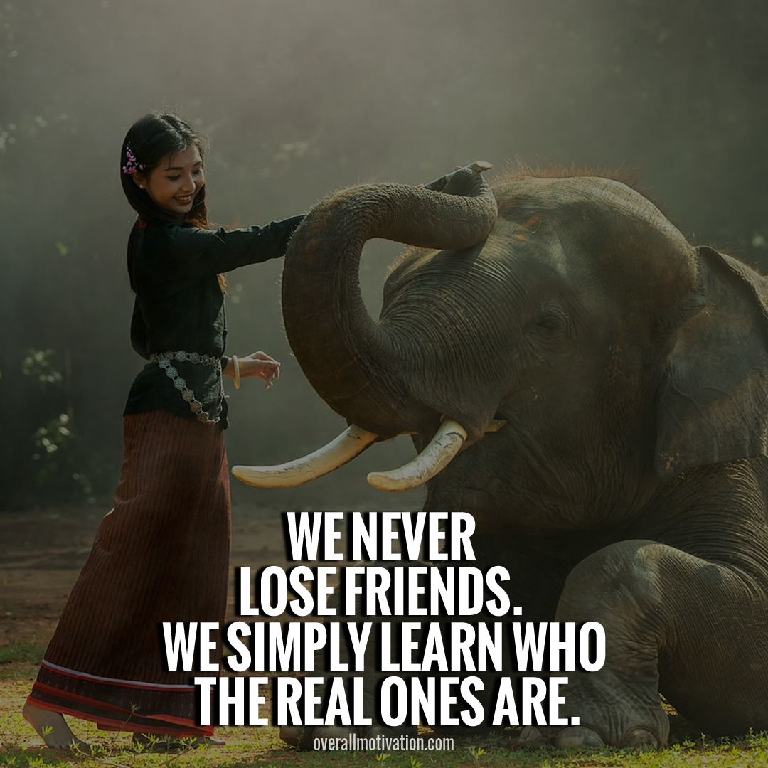 toxic friendship quotes we learn