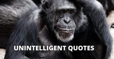 unintelligent quotes featured