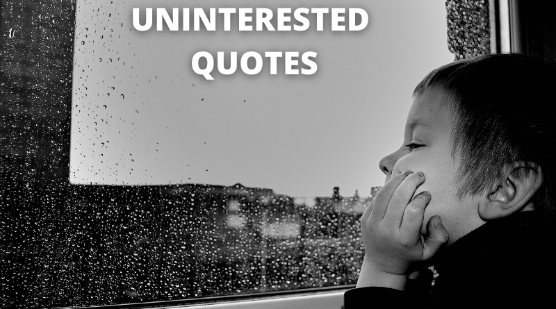 uninterested quotes featured