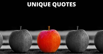 unique quotes featured