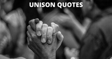 unison quotes featured