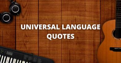 universal language quotes featured